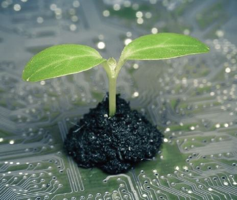 Plant Phenomics Phridays Image