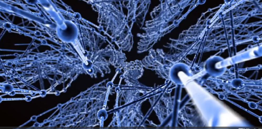 Complex Biosystems Weekly Webinar  Image