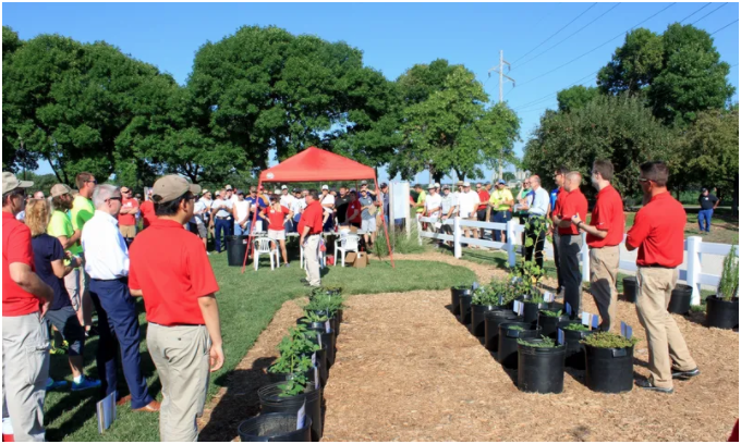 2020 Virtual Nebraska Turfgrass Field Day Image