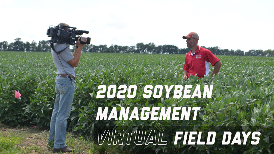 2020 Soybean Management Field Days Image