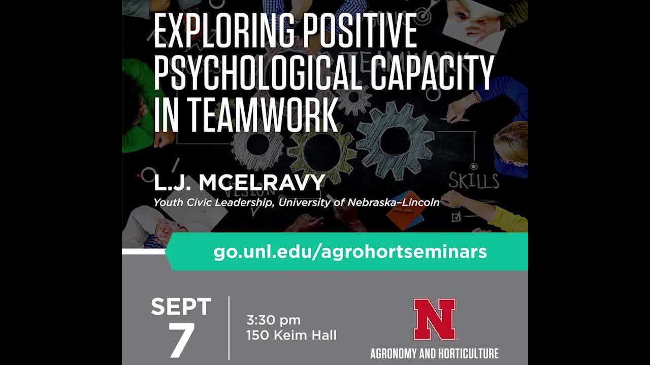 Exploring Positive Psychological Capacity in Teamwork