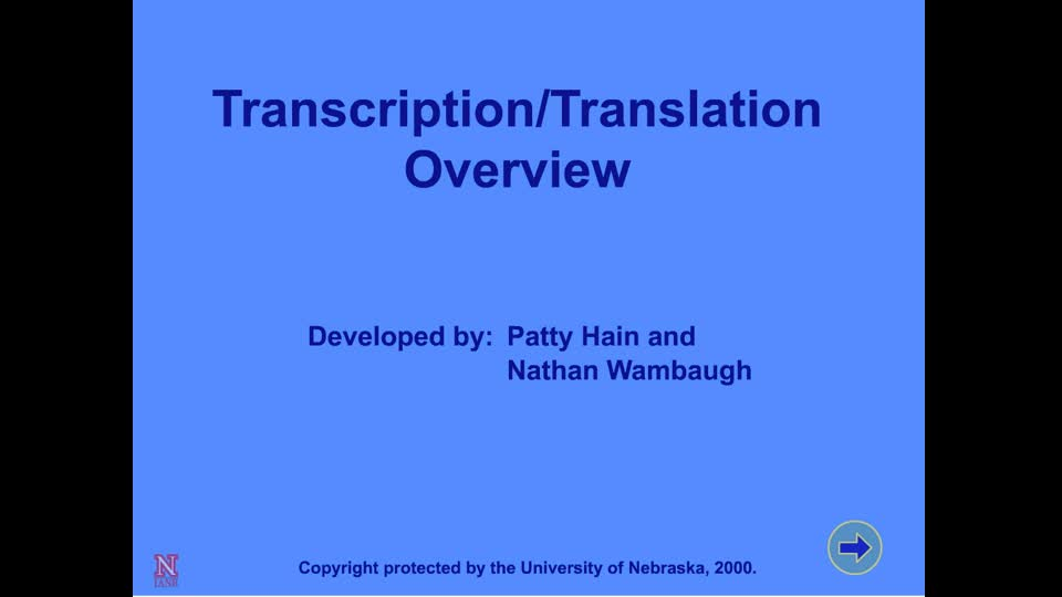 Transcription/Translation Overview