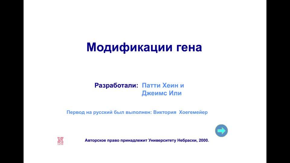 Модификации гена Gene Modifications - Russian