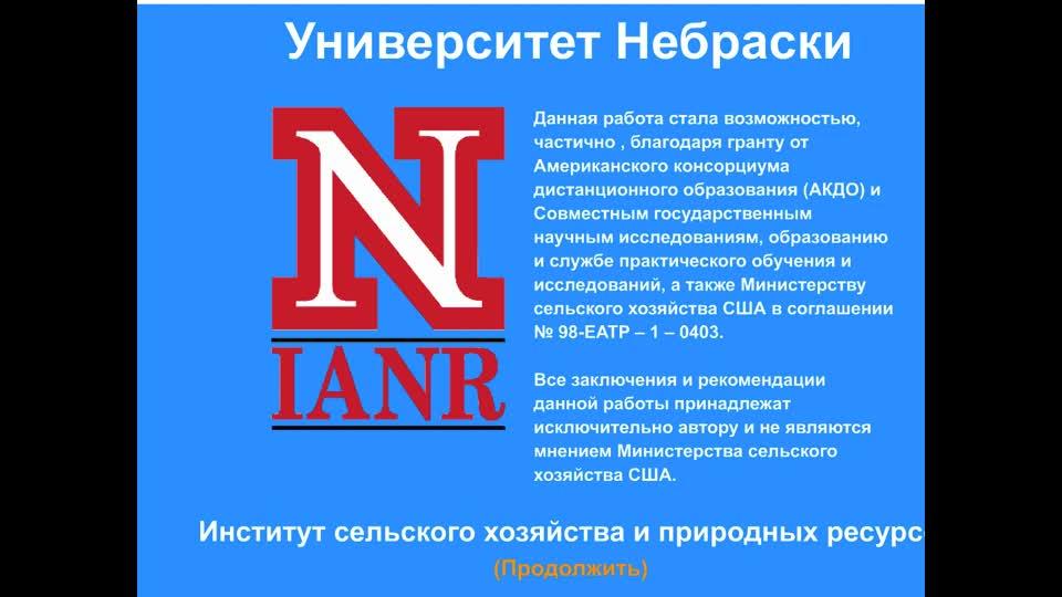 Antisense - Russian Translation