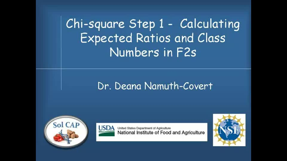 Chi-square Step 1 - Calculating Expected Ratios and Class Numbers in F2s