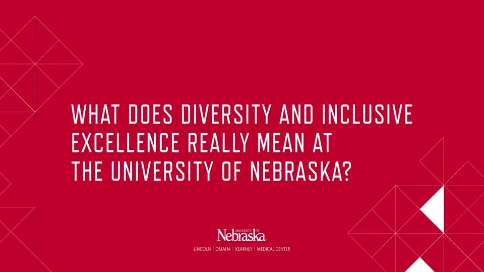 Diversity at NU (2019)