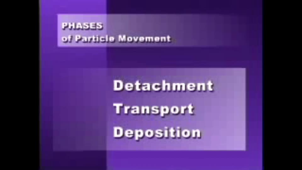 Phases of Particle Movement