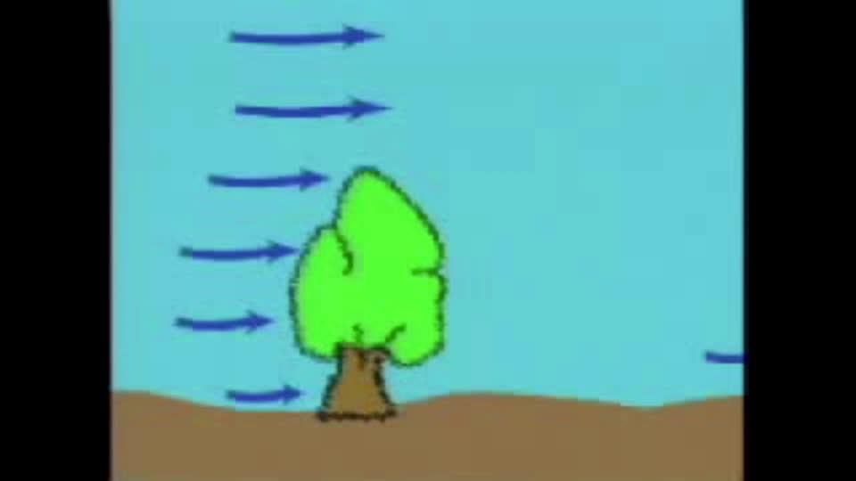 Wind Erosion Control