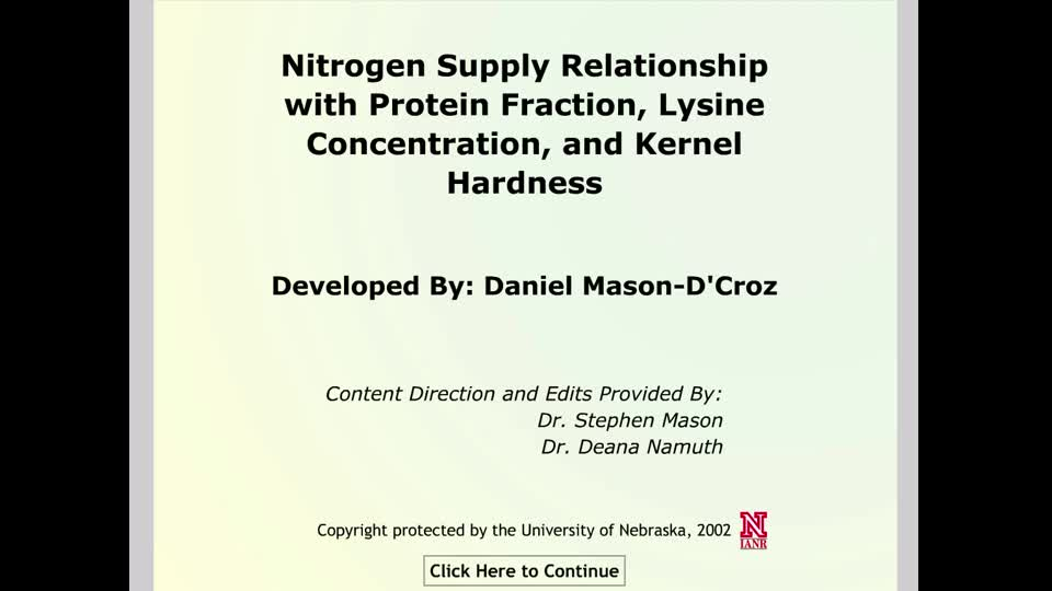 nitrogen supply relationship with protein fraction, lysine concentration, and kernel hardness