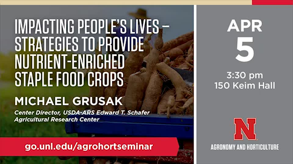 Impacting People's Lives – Strategies to Provide Nutrient-Enriched Staple Food Crops