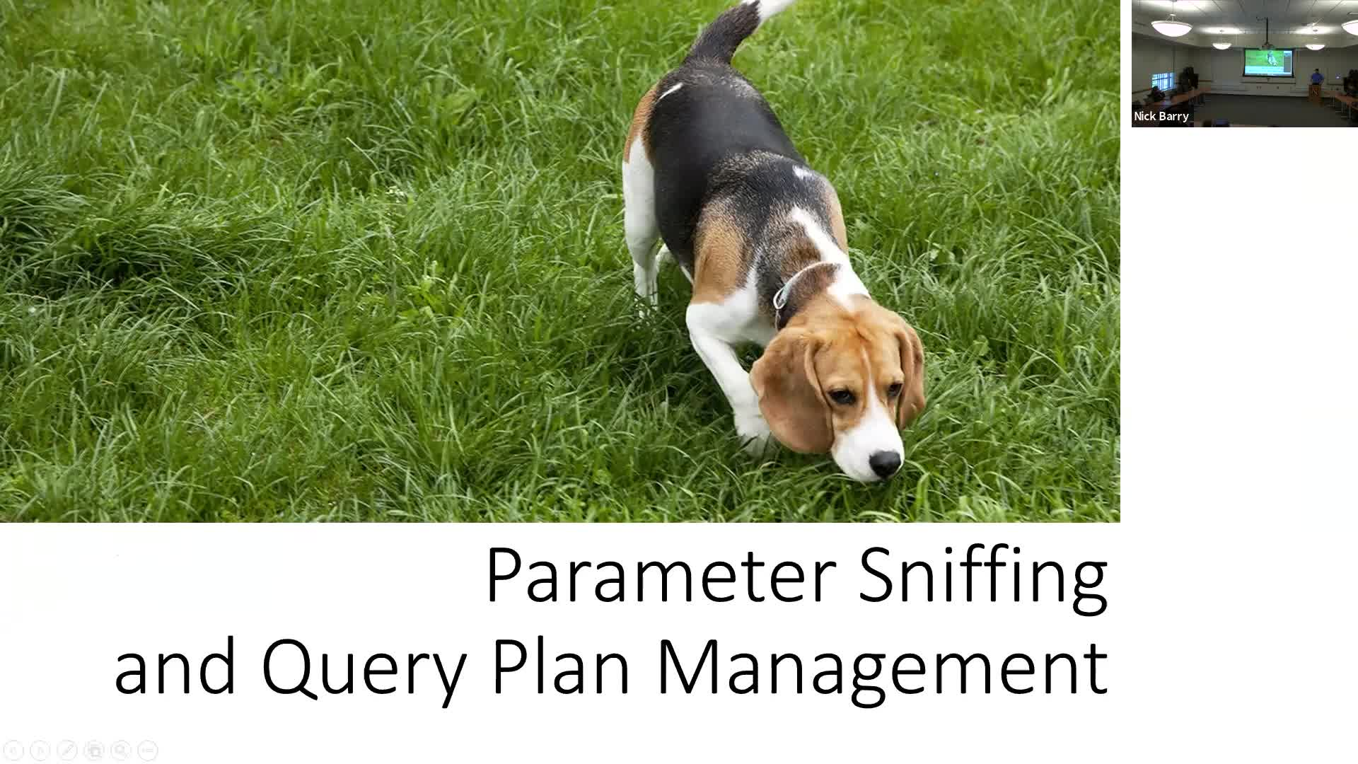Parameter Sniffing and Query Plan Management in SQL Serve