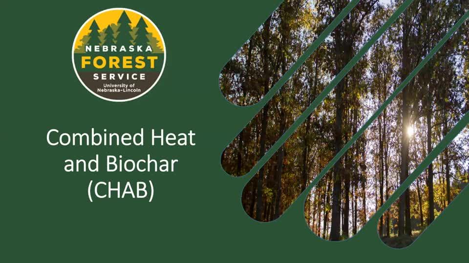 Combined Heat and Biochar Webinar