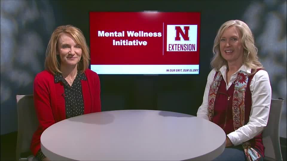 Mental Wellness Initiative