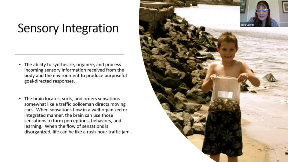 Sensory Integration and Improving Developmental Skills: Beyond Vests and Chewy Tubes