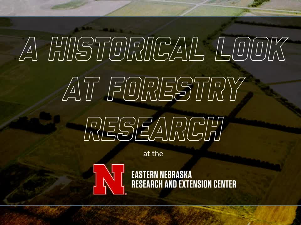 Happy Arbor Day from ENREC - Pictorial look at the history of forestry research at ENREC - https://go.unl.edu/forestryhistory