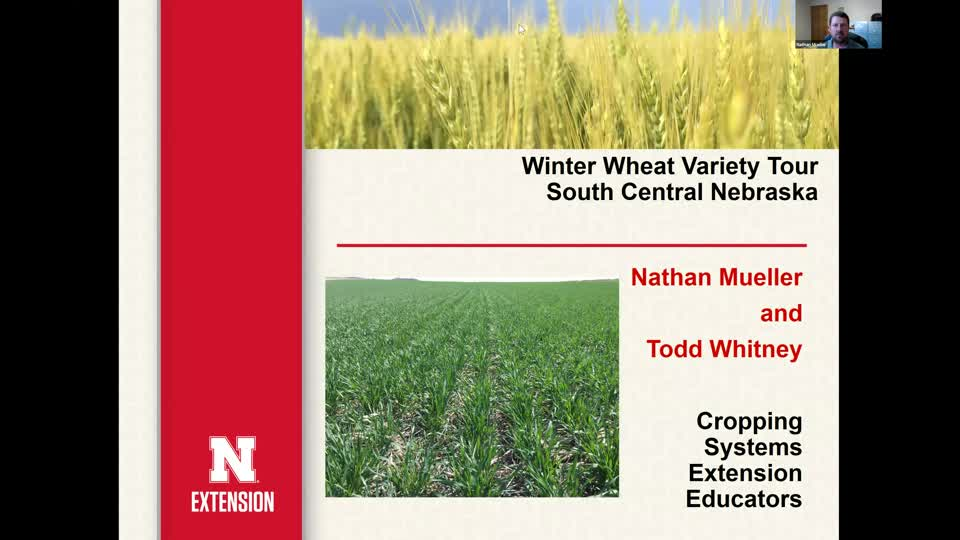 Part 1 - 2020 Winter Wheat Variety Tour for South Central Nebraska: Introduction and overview