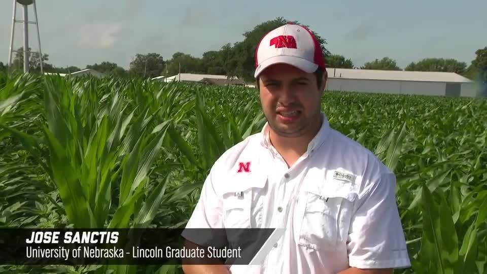Jose Sanctis –Enlist E3 Corn, 2020 Virtual Field Day for Management of Atrazine, Glyphosate, and ALS Inhibitors-resistant Palmer amaranth in Corn