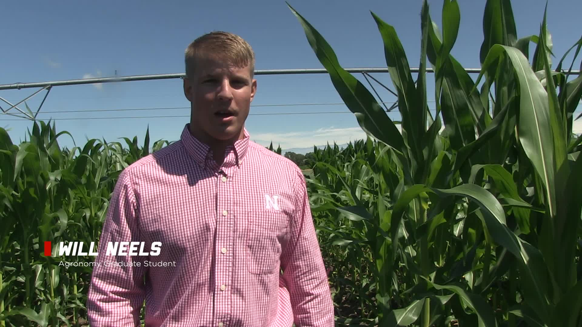 Corn Nitrogen Rate and Timing Field Trials with Will Neels