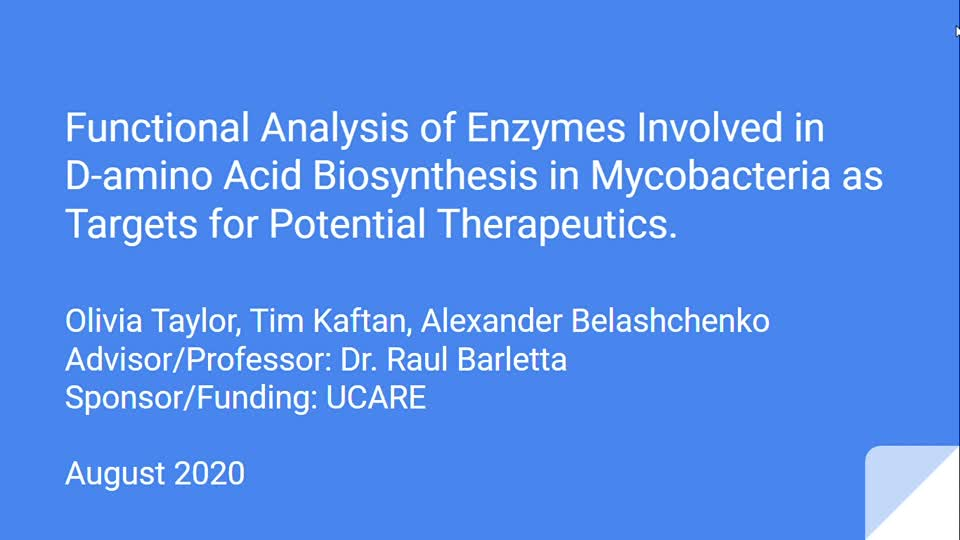 Functional Analysis of Enzymes Involved in D-amino Acid Biosynthesis in Mycobacteria as Targets for Potential Therapeutics