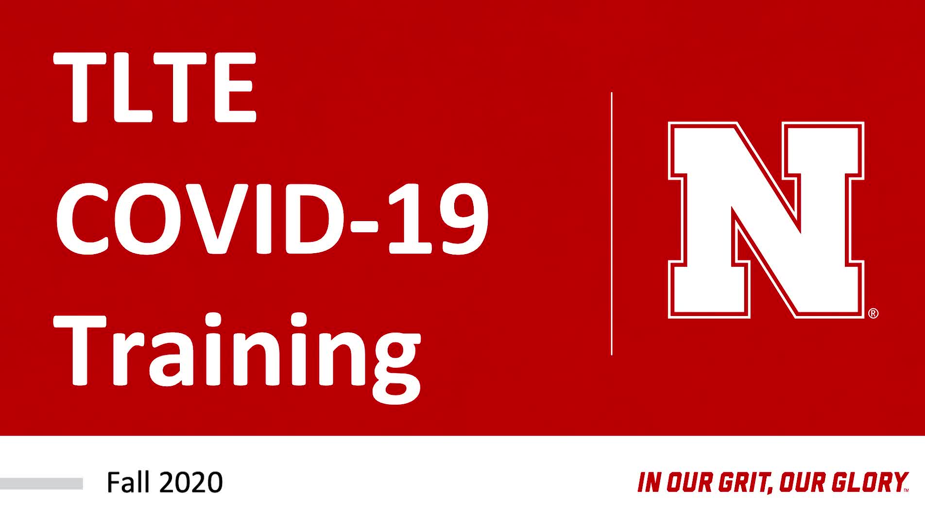 TLTE COVID-19 Training