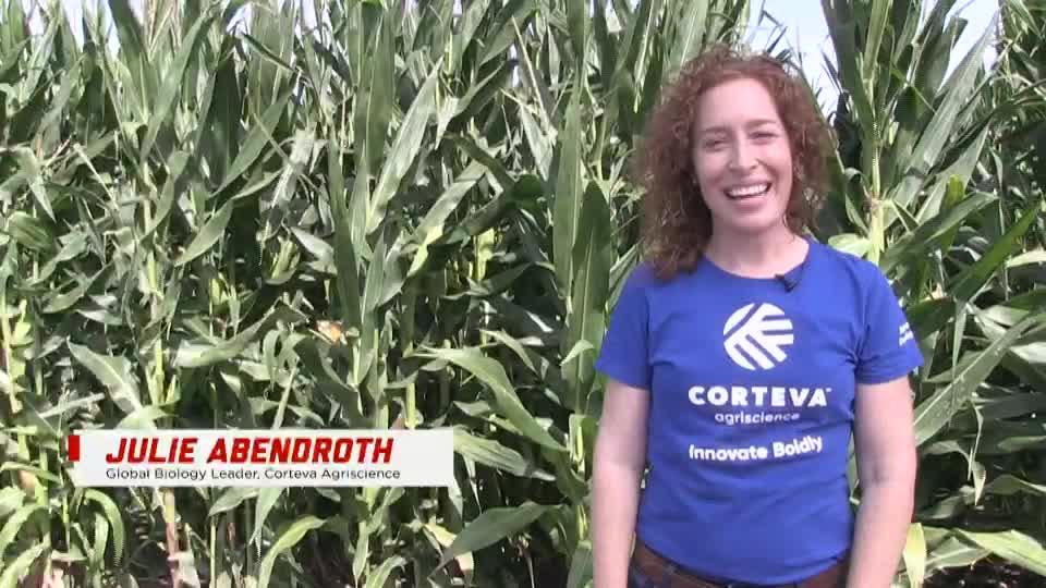 Agronomy alumna Julie Abendroth