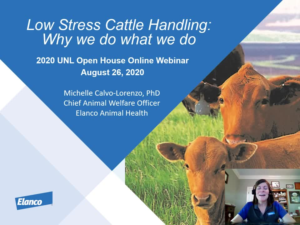 Low Stress Animal Handling: Why we do what we do
