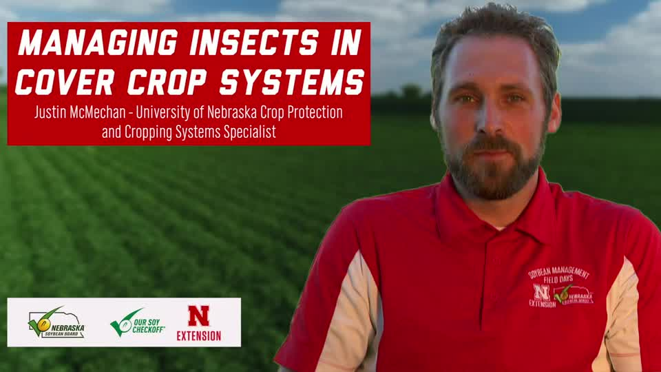 3 - 2020 Soybean Management Field Days - Managing Insects in Cover Crop Systems