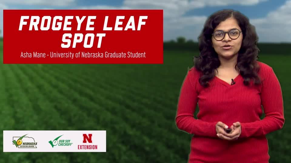 5 - 2020 Soybean Management Field Days - Frogeye Leaf Spot Update