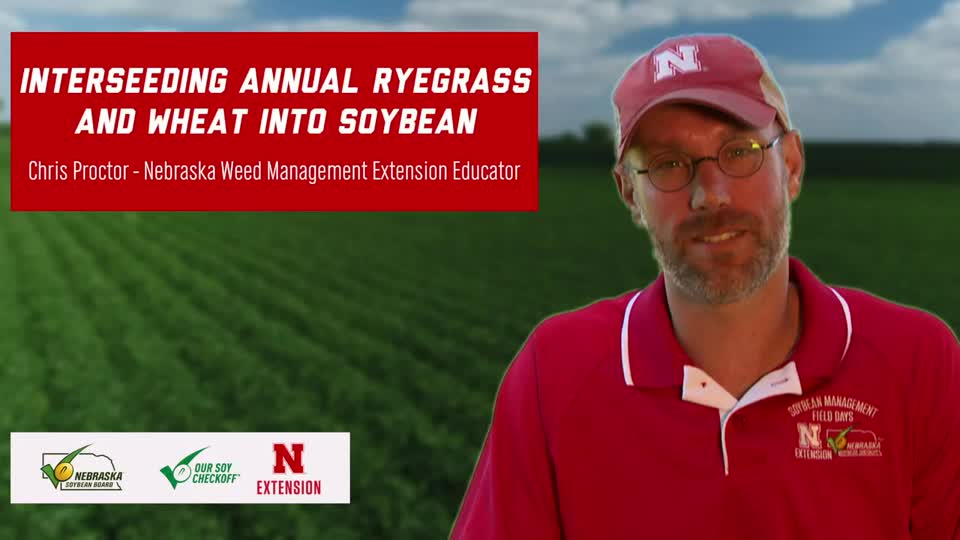 10 - 2020 Soybean Management Field Days - Interseeding Annual Ryegrass and Wheat into Soybean