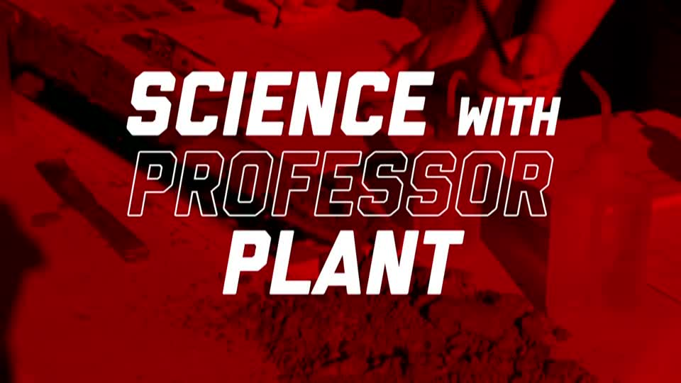 Science with Professor Plant – Beck Young