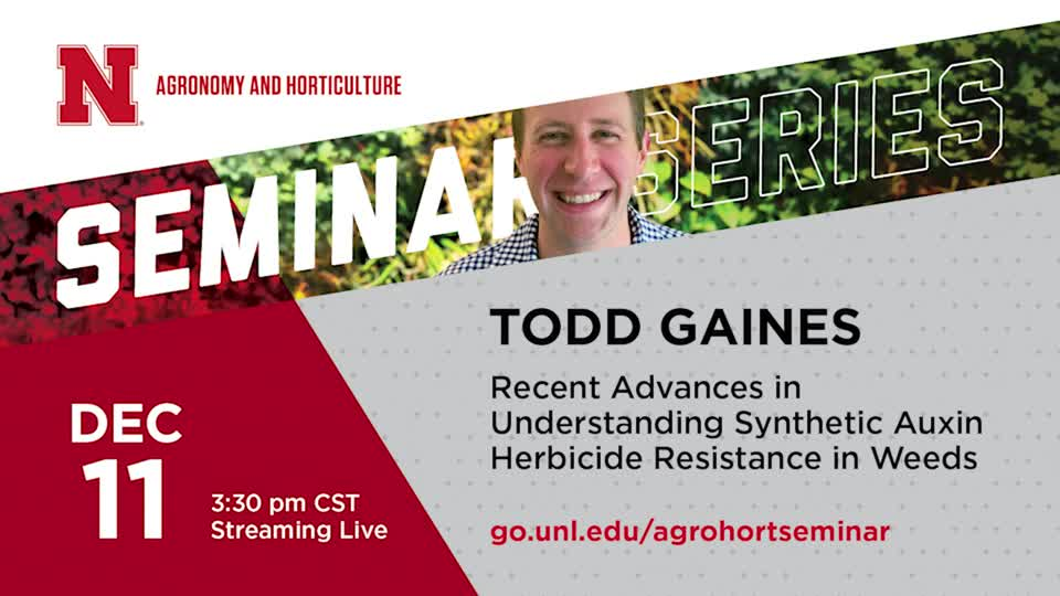 Recent Advances in Understanding Synthetic Auxin Herbicide Resistance in Weeds