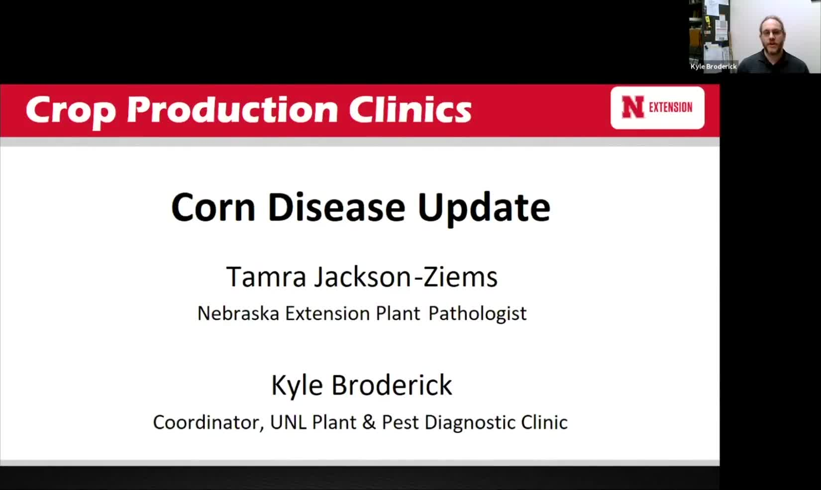 Corn Disease Update