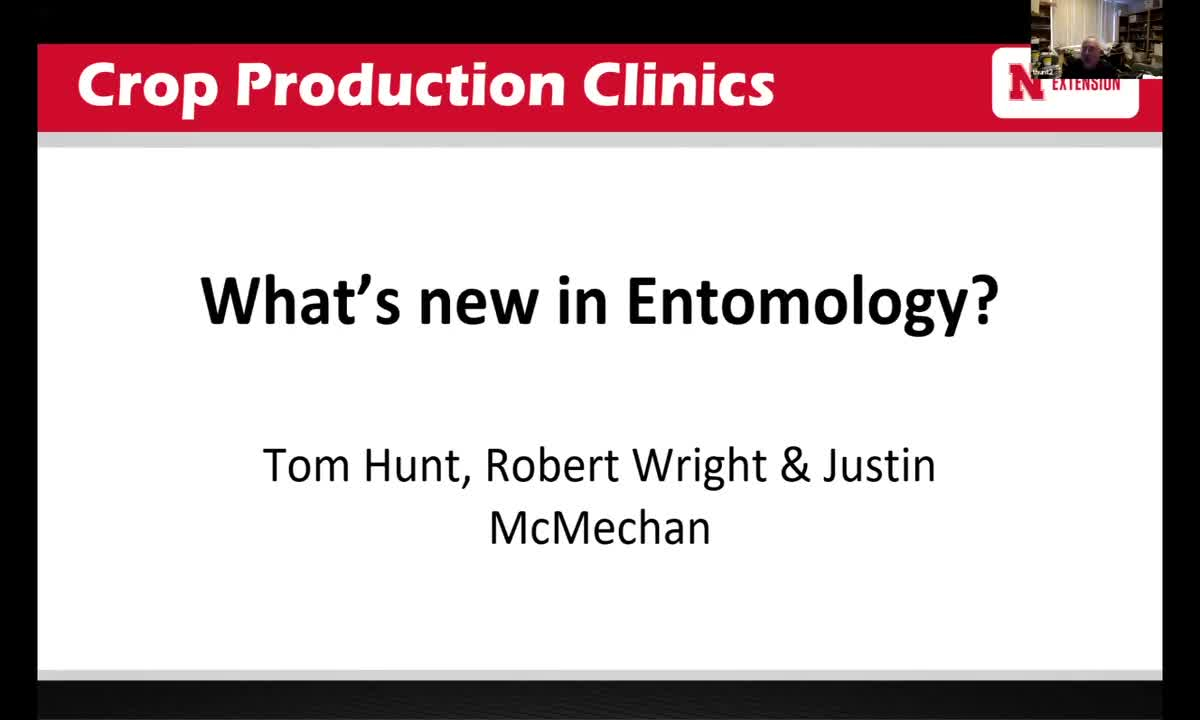 What's new in Entomology