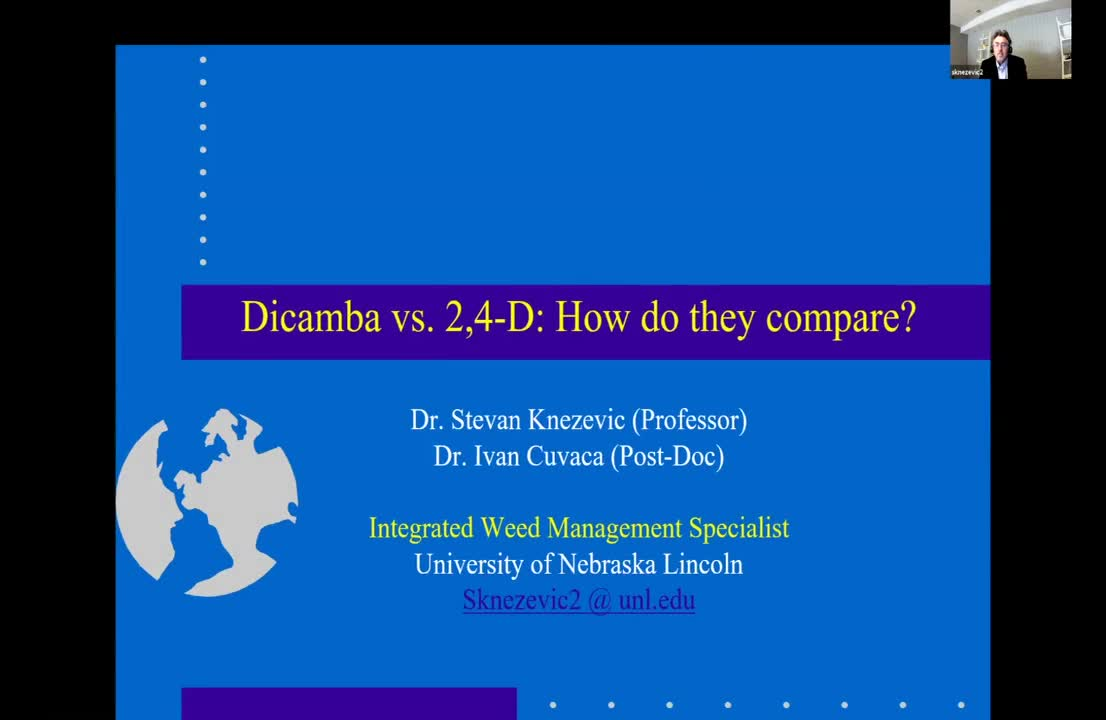 2,4_D vs. Dicamba How do they compare