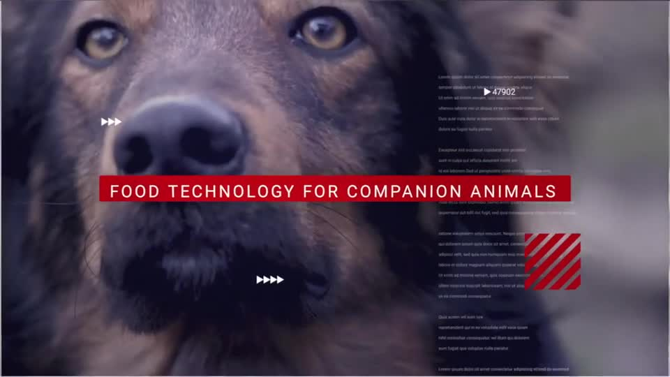 Nebraska Food Technology for Companion Animals