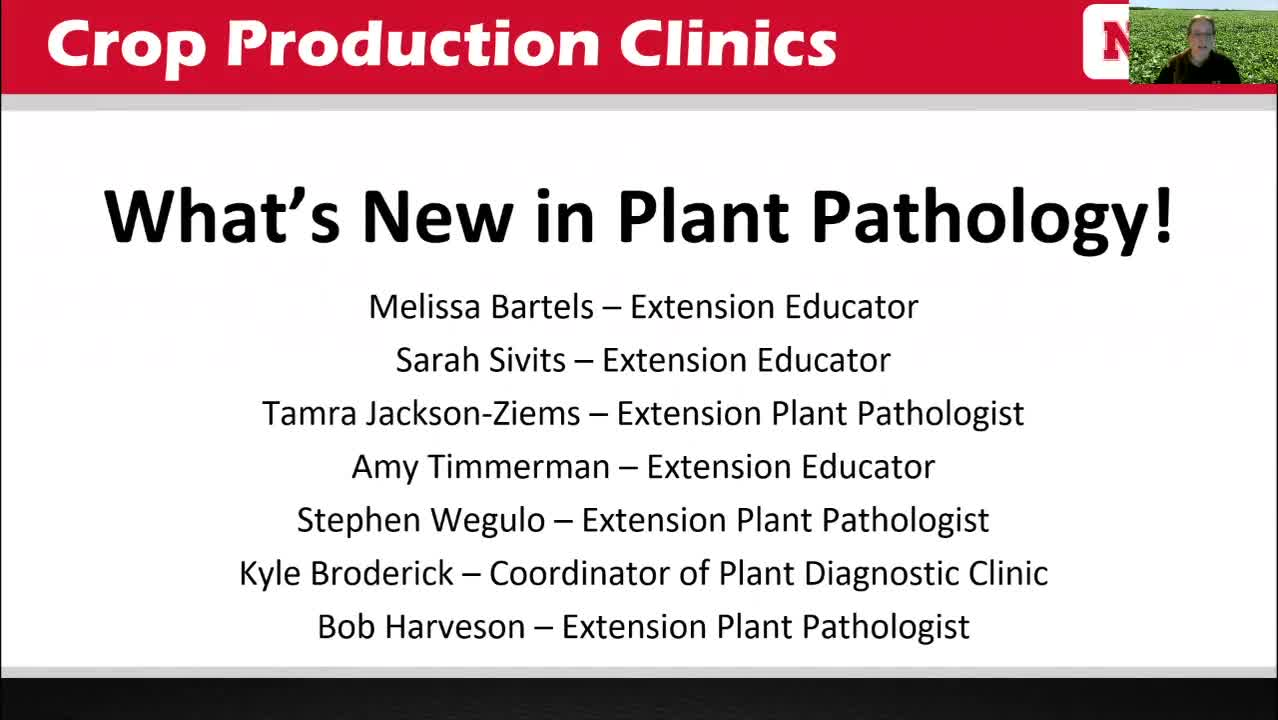 What's New in Plant Pathology?