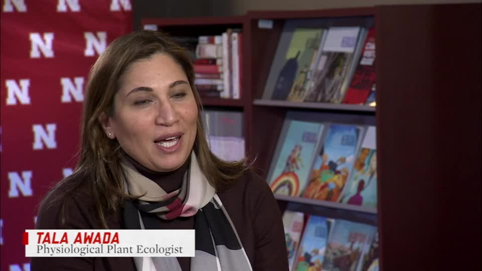 Asked&Answered: Tala Awada