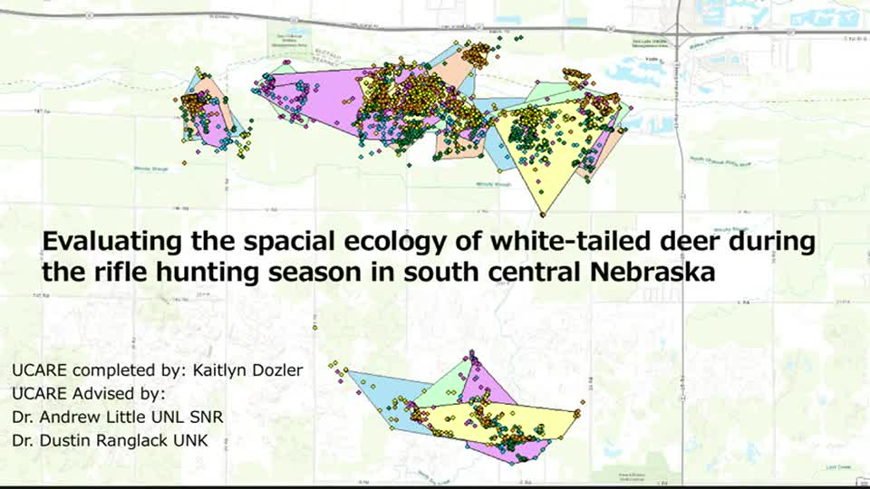 Evaluating the spatial ecology of white-tailed deer during the rifle hunting season in south central Nebraska
