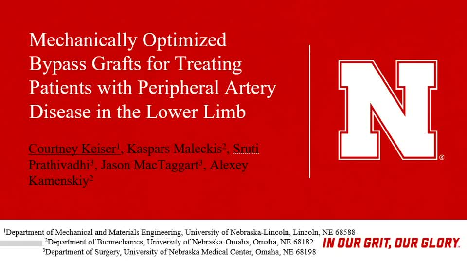 Mechanically Optimized Bypass Grafts for Treating Patients with Peripheral Artery Disease in the Lower Limb
