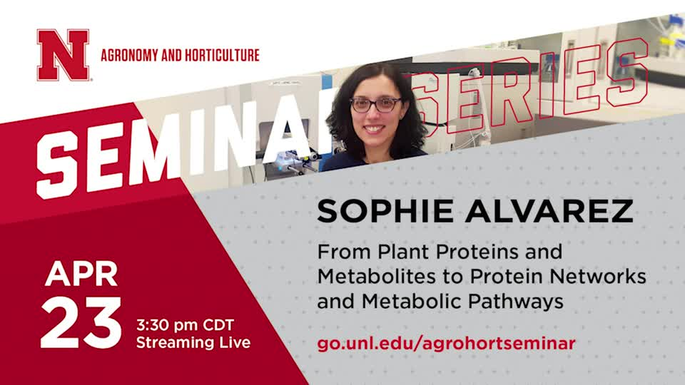 From Plant Proteins and Metabolites to Protein Networks and Metabolic Pathways