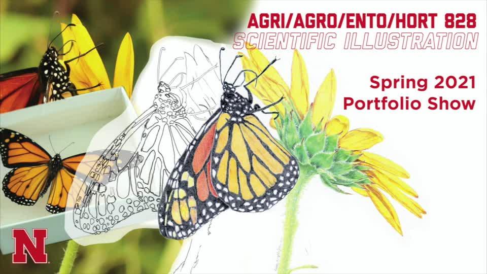 Scientific Illustration 2021 Student Portfolios