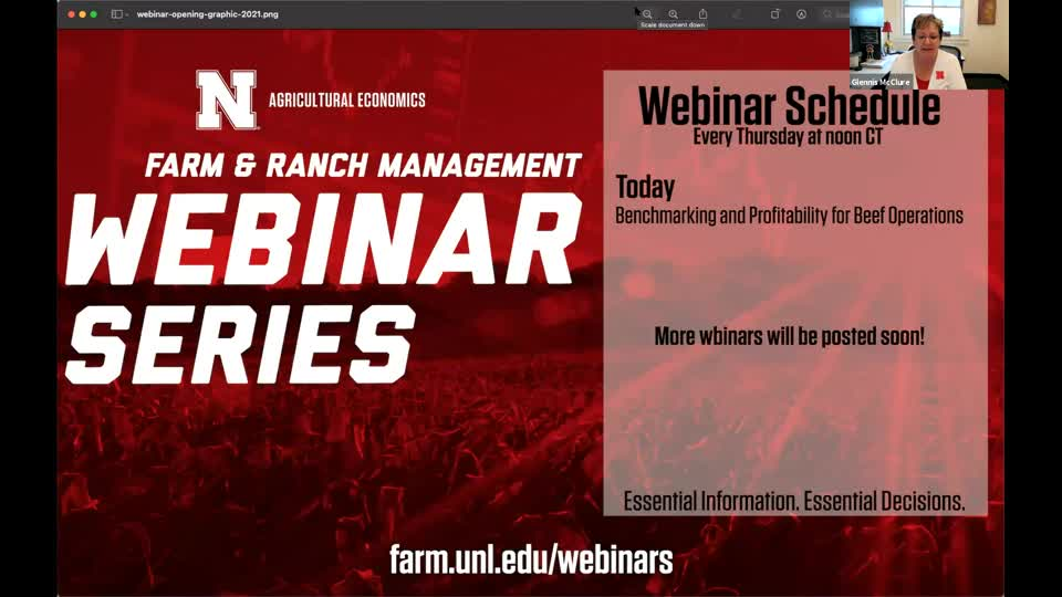 Benchmarking and Profitability for Beef Operations