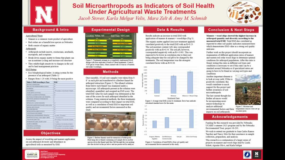 Soil Microarthropods as Indicators of Soil Health Under Agricultural Waste Treatments