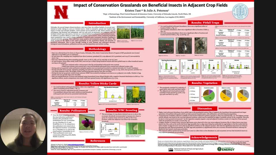 Impact of Conservation Grasslands on Beneficial Insects in Adjacent Crop Fields