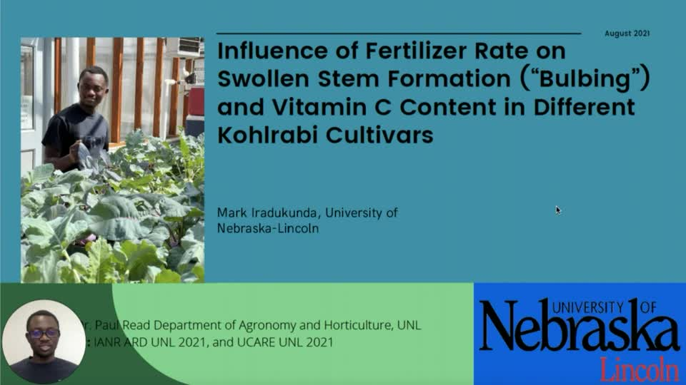 """Influence of Fertilizer Rate on Swollen Stem Formation (""""Bulbing"""") and Vitamin C Content in Different Kohlrabi Cultivars"""
