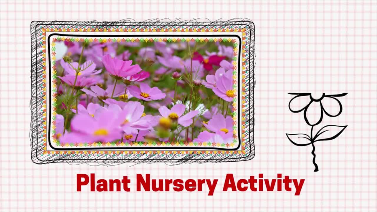 Nursery Hands-on Activity