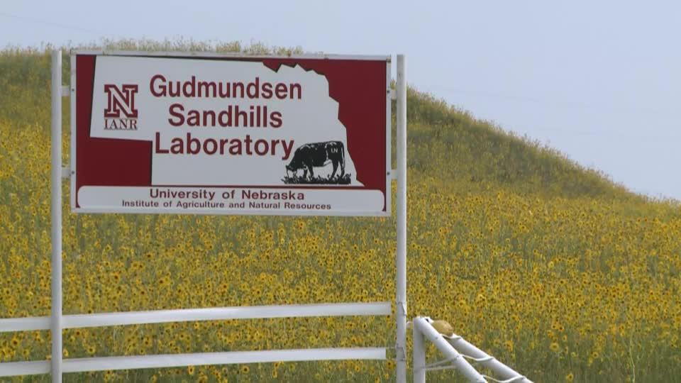 Gudmundsen Sandhills Laboratory