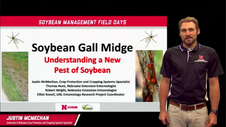 13 - 2021 Soybean Management Field Days - Soybean Gall Midge: Understanding a New Pest of Soybean