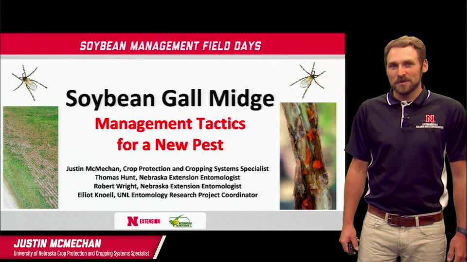14 - 2021 Soybean Management Field Days - Soybean Gall Midge: Management Tactics For a New Pest