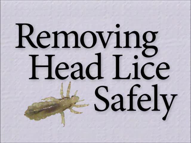 Removing Head Lice Safely